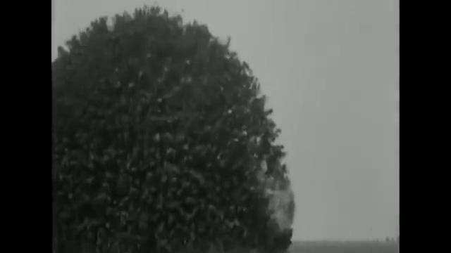 敵陣地の真下にトンネルを掘り、爆薬を仕掛けて陣地を爆破する工兵の話。 映画 ザ・サイレント・ウォー 戦場の絆