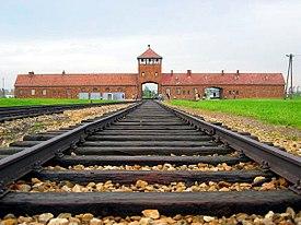 映画 「灰の記憶」 アウシュビッツ収容所で働く、ゾンダーコマンドを扱った映画